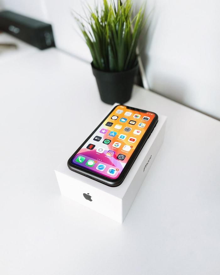 iphone 11 pro max boite